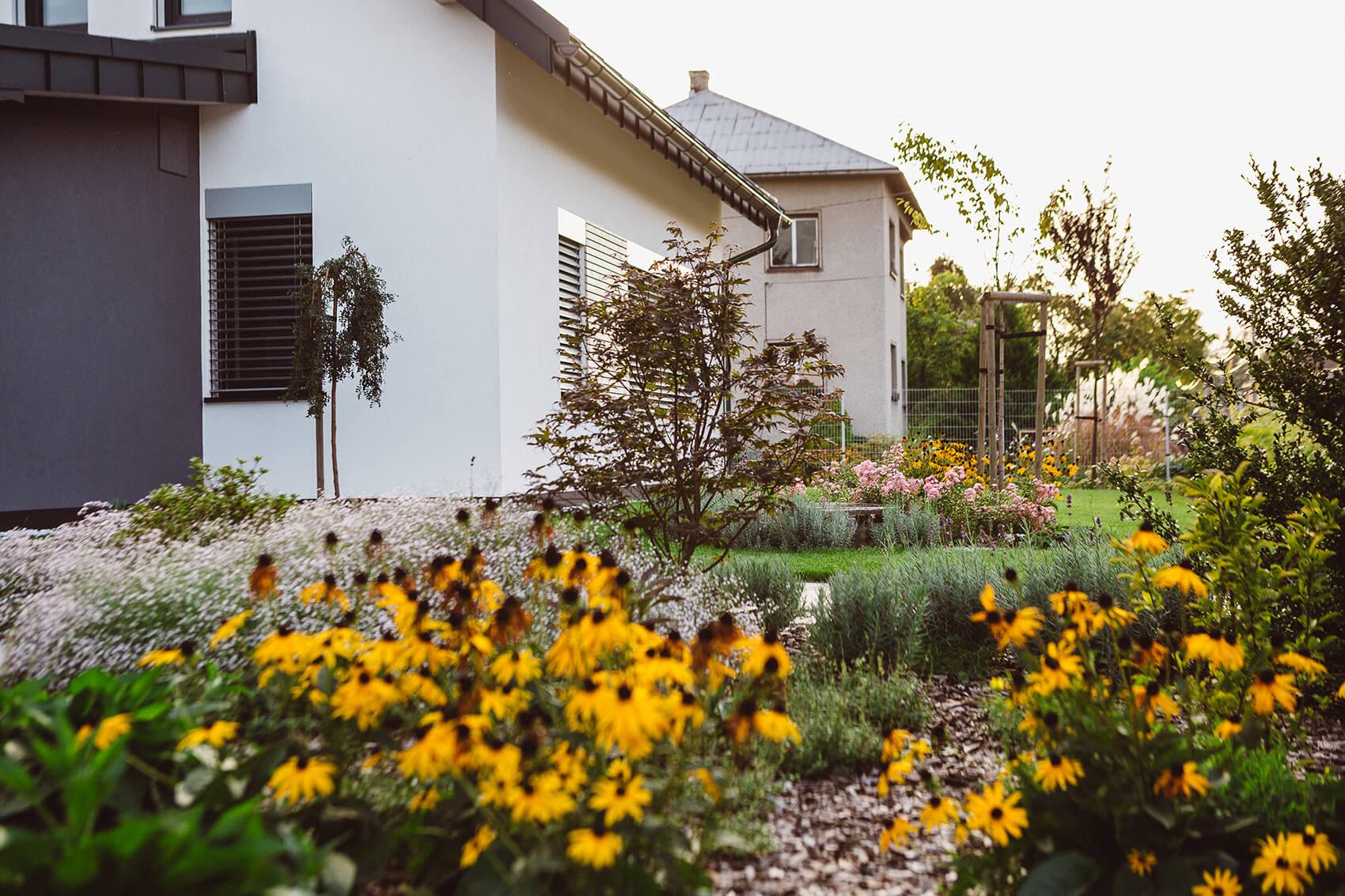 AK Zahrady - Bambusová zahrada