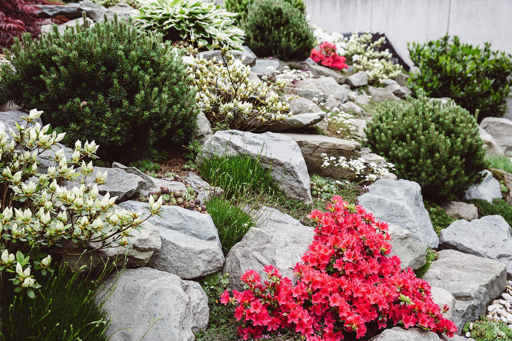 AK Zahrady - Zahrada pro milovníka golfu