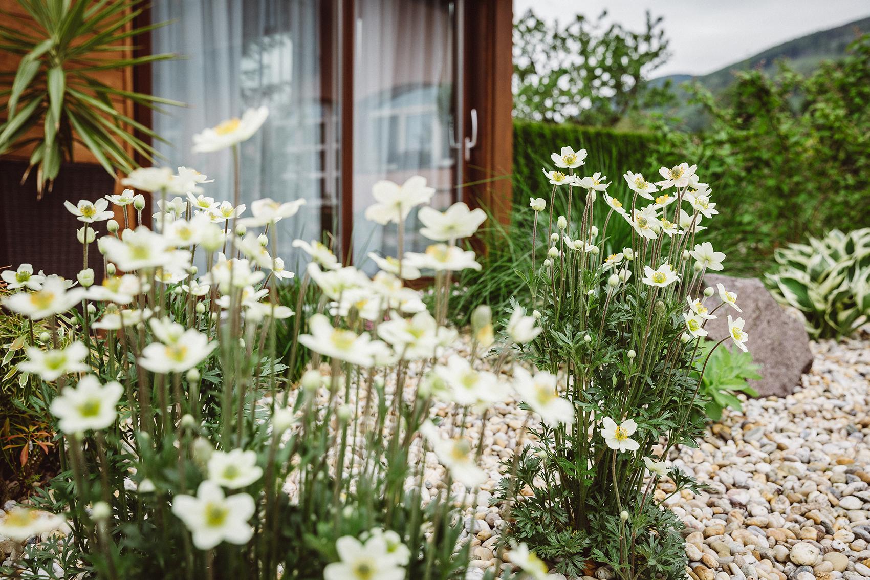 AK Zahrady - Zahrada s Monou