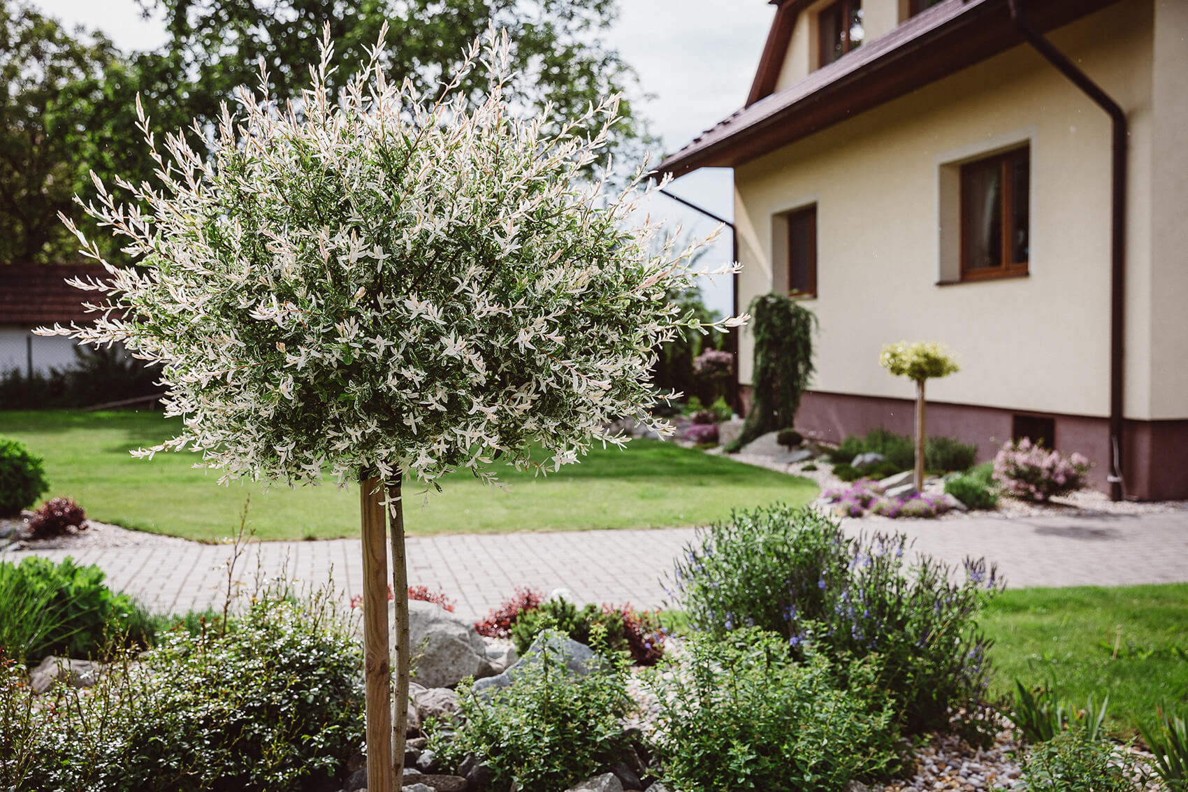AK Zahrady - Garfieldova zahrada